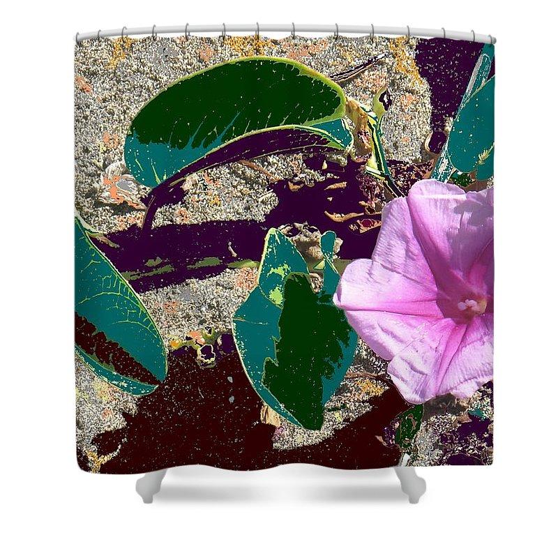 Beach Shower Curtain featuring the photograph Beach Flower by Ian MacDonald
