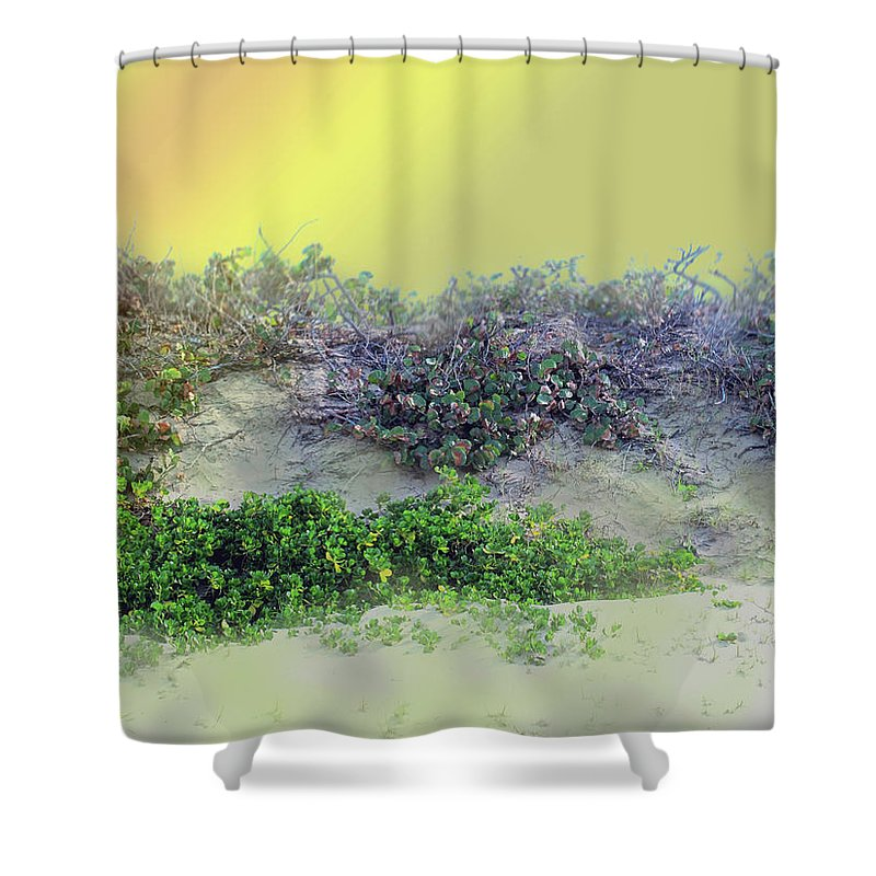 Beach Shower Curtain featuring the photograph Beached by Ian MacDonald