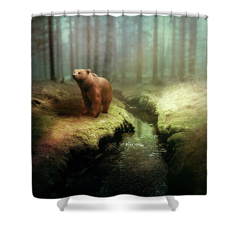Bear Shower Curtain featuring the photograph Bear Mountain Fantasy by David Dehner
