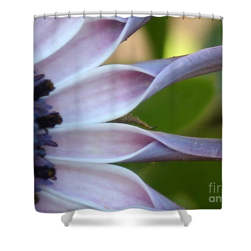 Floral Shower Curtain featuring the photograph Beautiful 002 by Line Gagne
