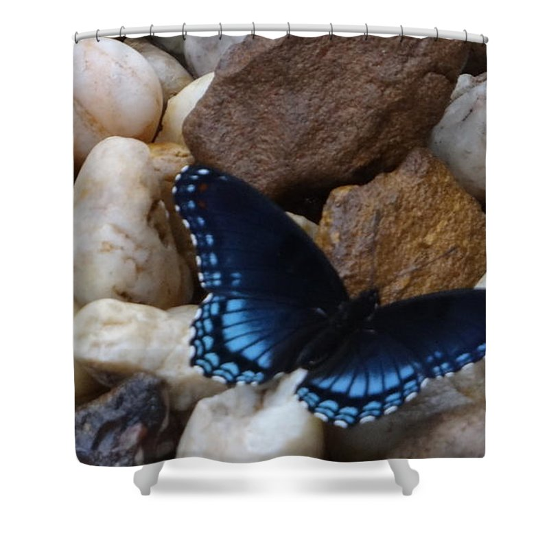 Butterfly Shower Curtain featuring the photograph Beautiful Blue Swallowtail by Deb Rassel