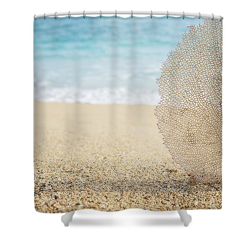Afternoon Shower Curtain featuring the photograph Beautiful Coral Element 1 by Brandon Tabiolo - Printscapes