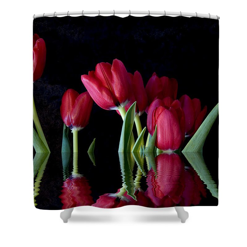 New England Photos Shower Curtain featuring the photograph Beautiful Reflection by Nancie DeMellia