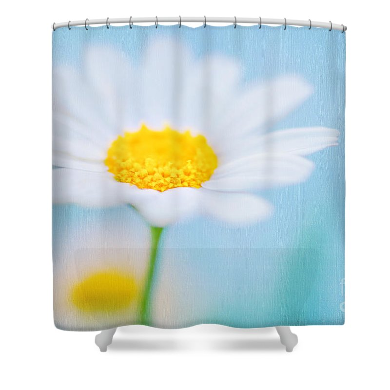 Background Shower Curtain featuring the photograph Beautiful Textured Background Of A Daisy Flower by Anna Om