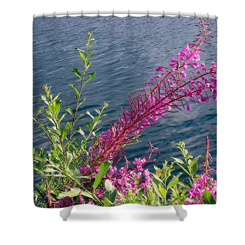 Nature Shower Curtain featuring the photograph Beauty By Waters Edge by Bill And Deb Hayes