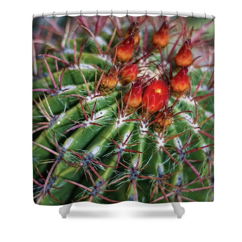 Blooming Shower Curtain featuring the photograph Beauty's Protections by Martina Schneeberg-Chrisien