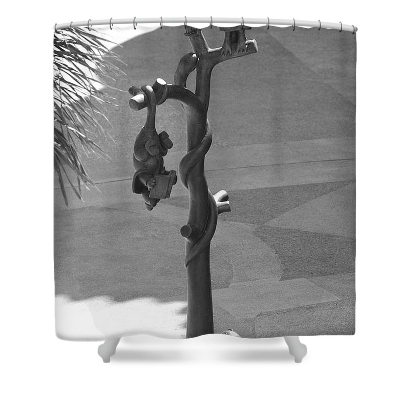 Black And White Shower Curtain featuring the photograph Beavers Bats And Squirrels by Rob Hans
