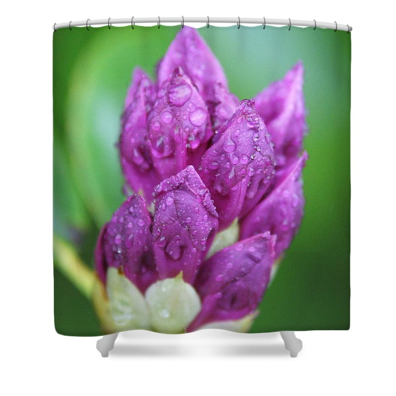 Flower Shower Curtain featuring the photograph Bedazzled by Alex Grichenko