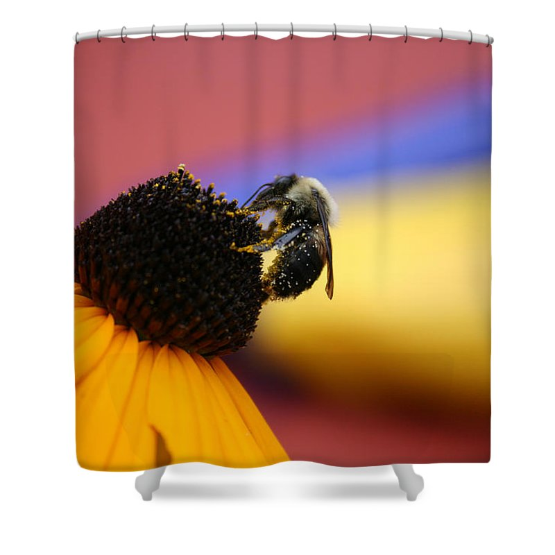 Insects Shower Curtain featuring the photograph Bee All You Can Bee by Linda Sannuti