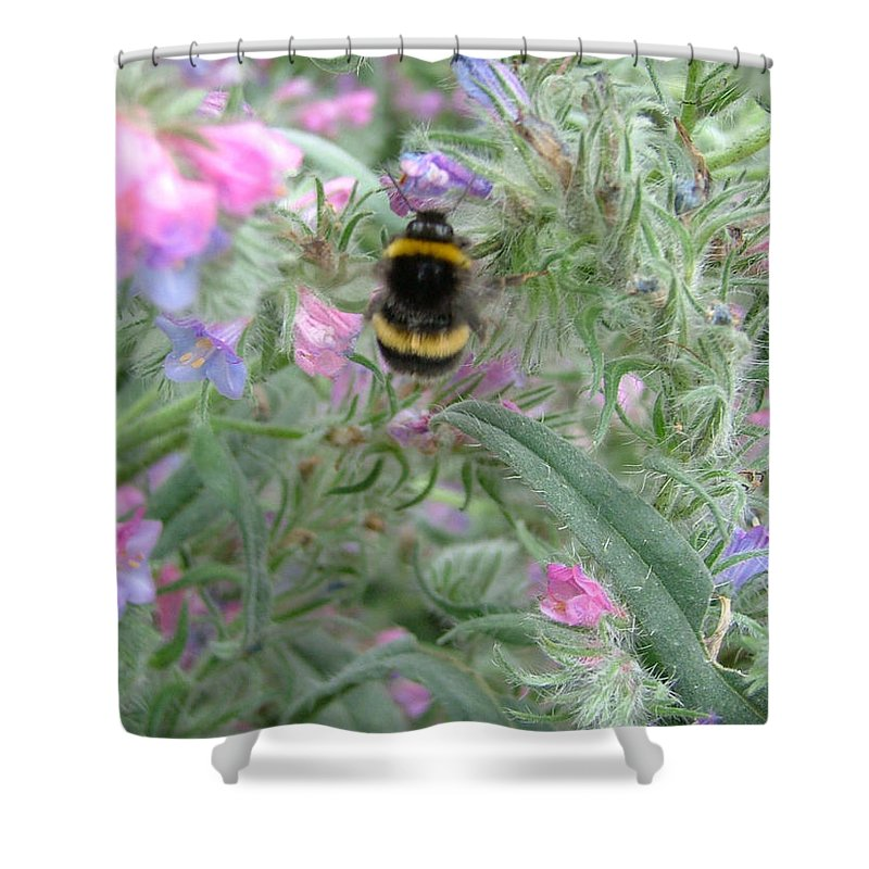 Bee And Flower Shower Curtain featuring the photograph Bee And Flower by Heather Lennox