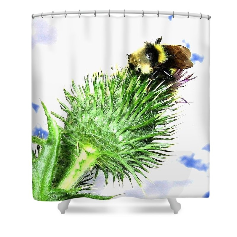 Bee Shower Curtain featuring the photograph Bee-line 4 by Will Borden
