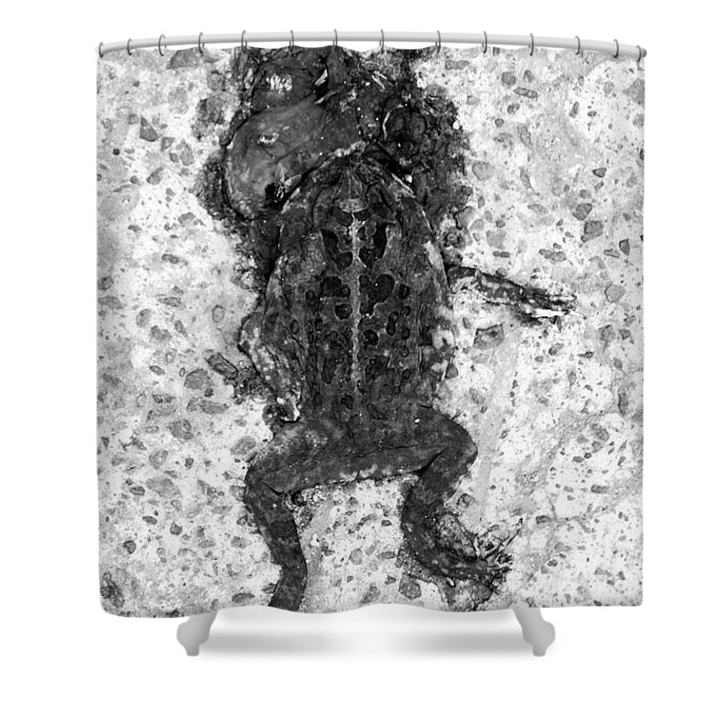 General Trias Shower Curtain featuring the photograph Been A Wooing by Jez C Self