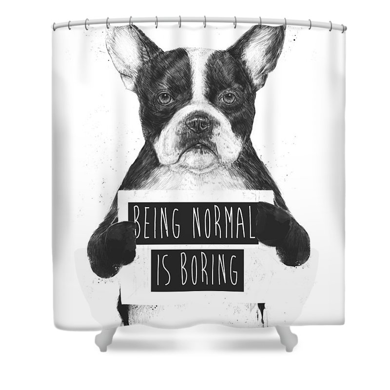 Bulldog Shower Curtain featuring the drawing Being Normal Is Boring by Balazs Solti