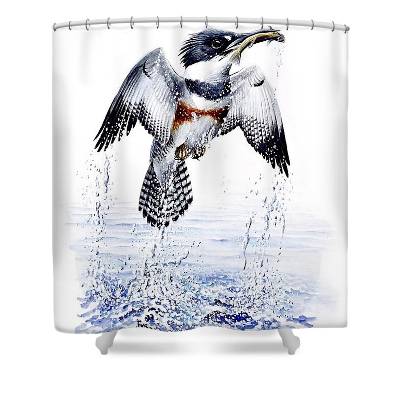 Chris Cox Shower Curtain featuring the painting Belted Kingfisher by Christopher Cox