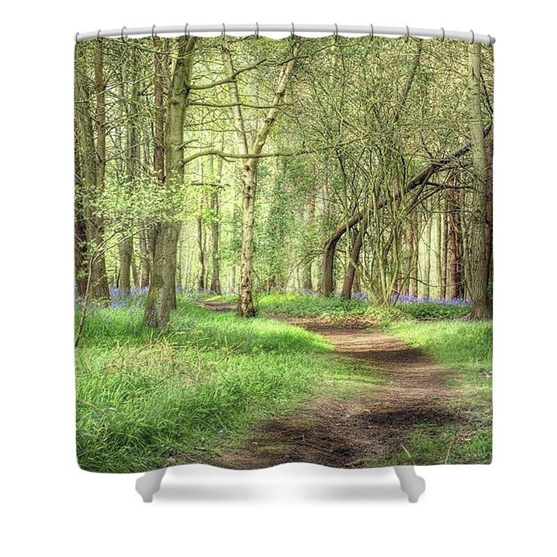 Nature Shower Curtain featuring the photograph Bentley Woods, Warwickshire #landscape by John Edwards