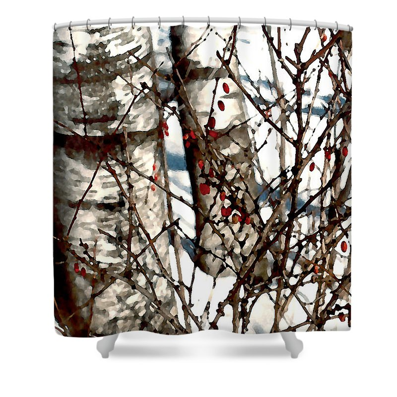 Trees Shower Curtain featuring the painting Berries And Birches by Paul Sachtleben