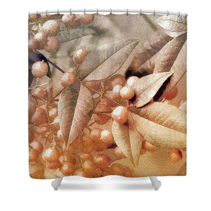 Floral Shower Curtain featuring the photograph Berry And Leaf Brocade by Holly Kempe