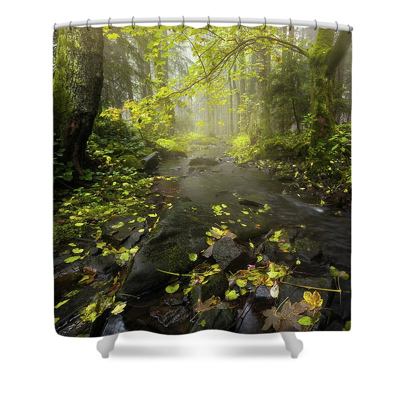 River Shower Curtain featuring the photograph Beside The Stream by Marco Heisler