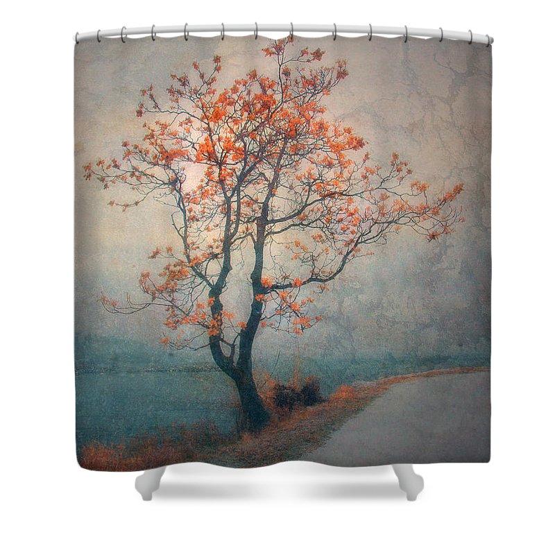 Seasons Shower Curtain featuring the photograph Between Seasons by Tara Turner