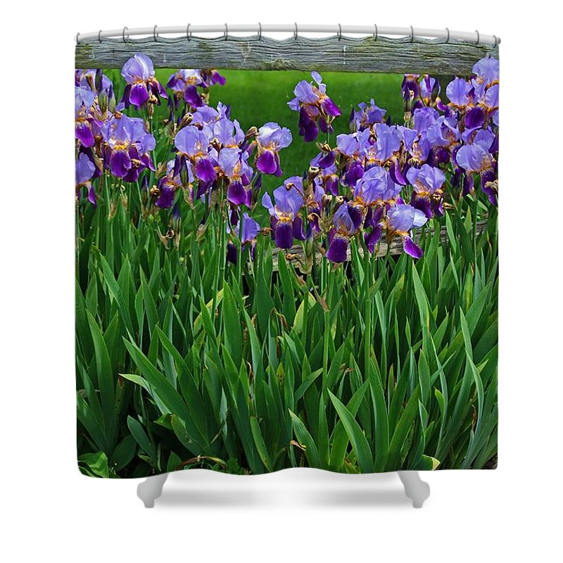 Purple Shower Curtain featuring the photograph Beyond The Mist by Michiale Schneider