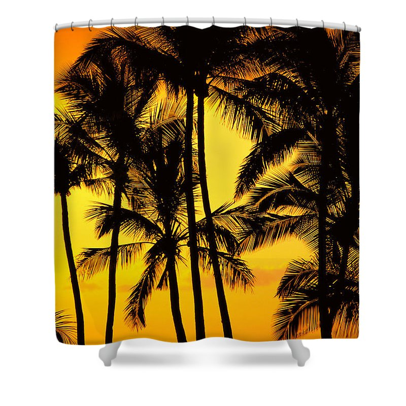 Amaze Shower Curtain featuring the photograph Big Island, View by Greg Vaughn - Printscapes