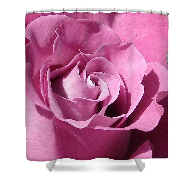Rose Pink Shower Curtain featuring the photograph Big Pink by Luciana Seymour
