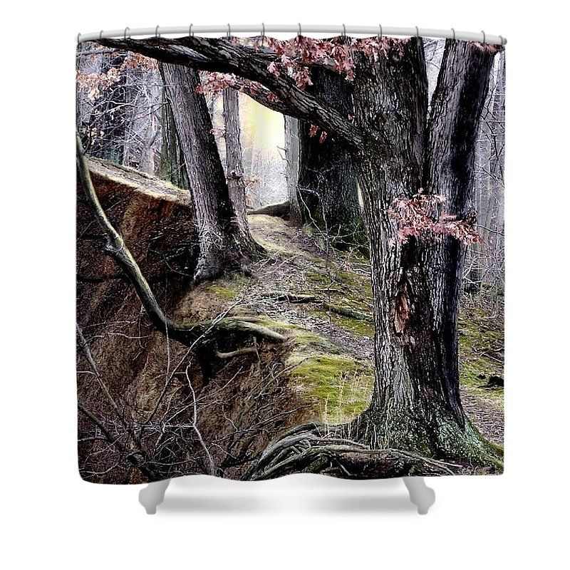 Nature Shower Curtain featuring the digital art Bilbow's Path by Bill Stephens