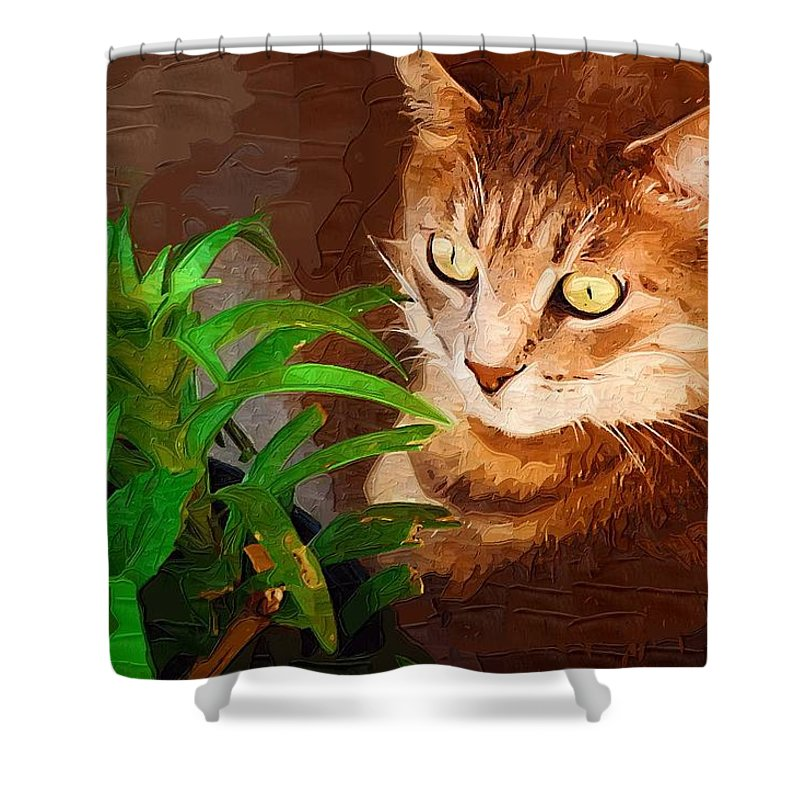 Cat Shower Curtain featuring the photograph Bink by Donna Bentley