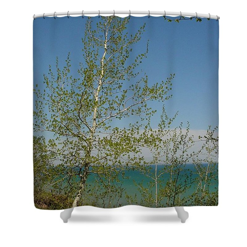Birch Tree Shower Curtain featuring the photograph Birch Tree Over Lake by Anita Burgermeister
