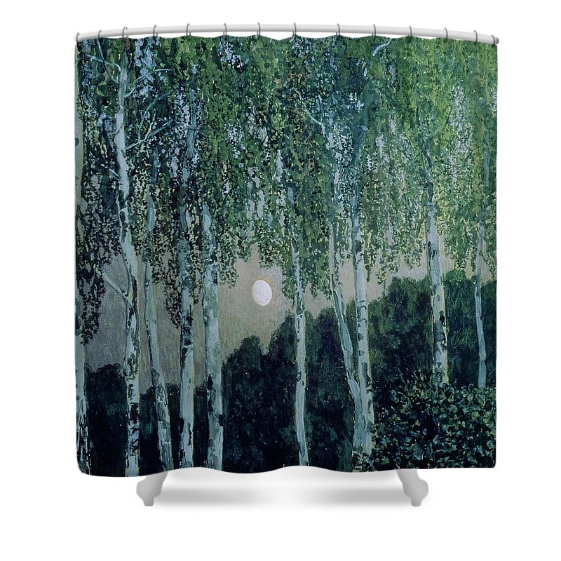 Birch Trees (oil On Canvas) By Aleksandr Jakovlevic Golovin (1863-1930) Shower Curtain featuring the painting Birch Trees by Aleksandr Jakovlevic Golovin