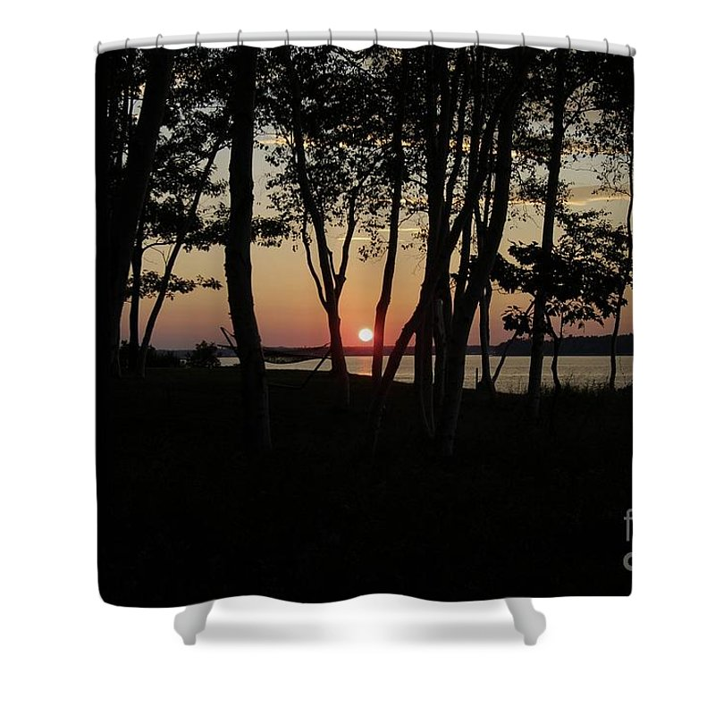 Birch Shower Curtain featuring the photograph Birches Watch The Sunset by Faith Harron Boudreau