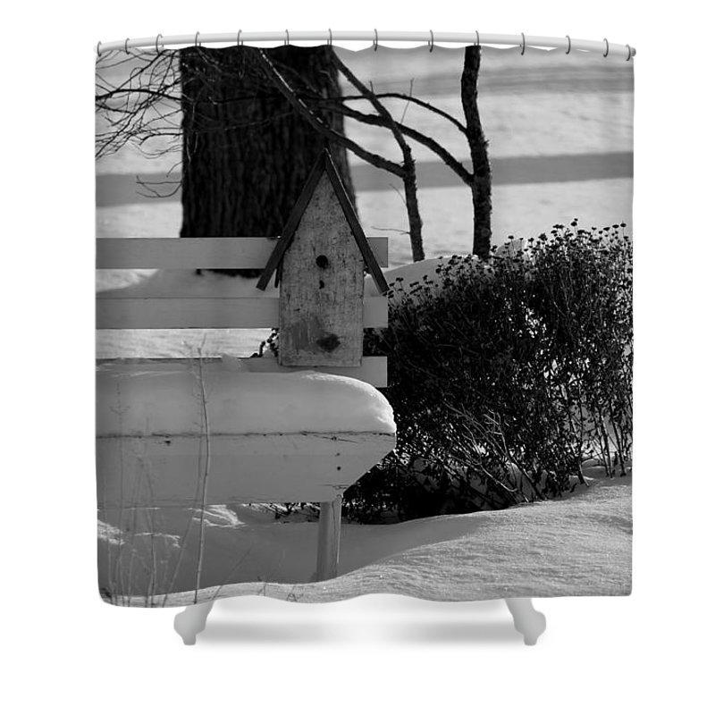 Bird House Bench - Detail Shower Curtain featuring the photograph Bird House Bench - Detail by Ed Smith