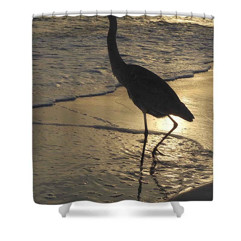 Heron Shower Curtain featuring the photograph Bird In Paradise by Jerry McElroy