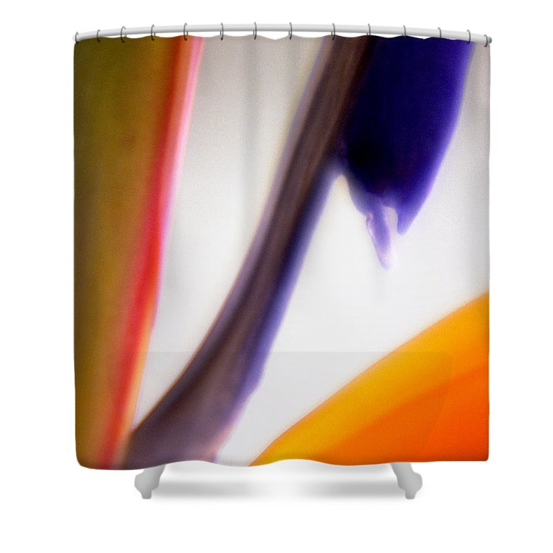 Macro Shower Curtain featuring the photograph Bird Of Paradise by Lee Santa
