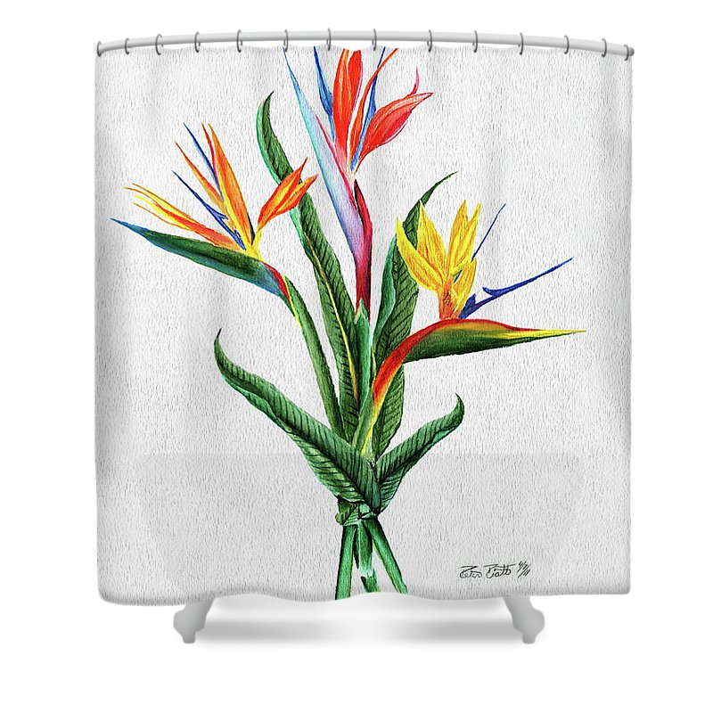 Bird Of Paradise Shower Curtain Featuring The Painting By Peter Piatt