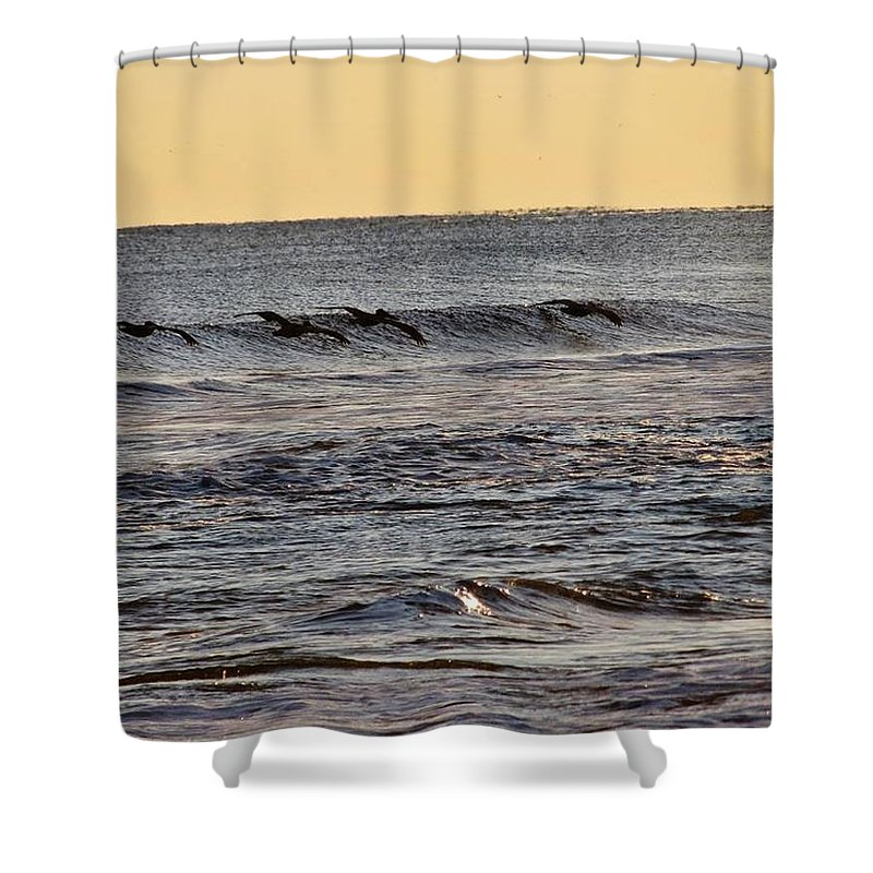 Birds Shower Curtain featuring the photograph Birds at Sea by Laura Henry
