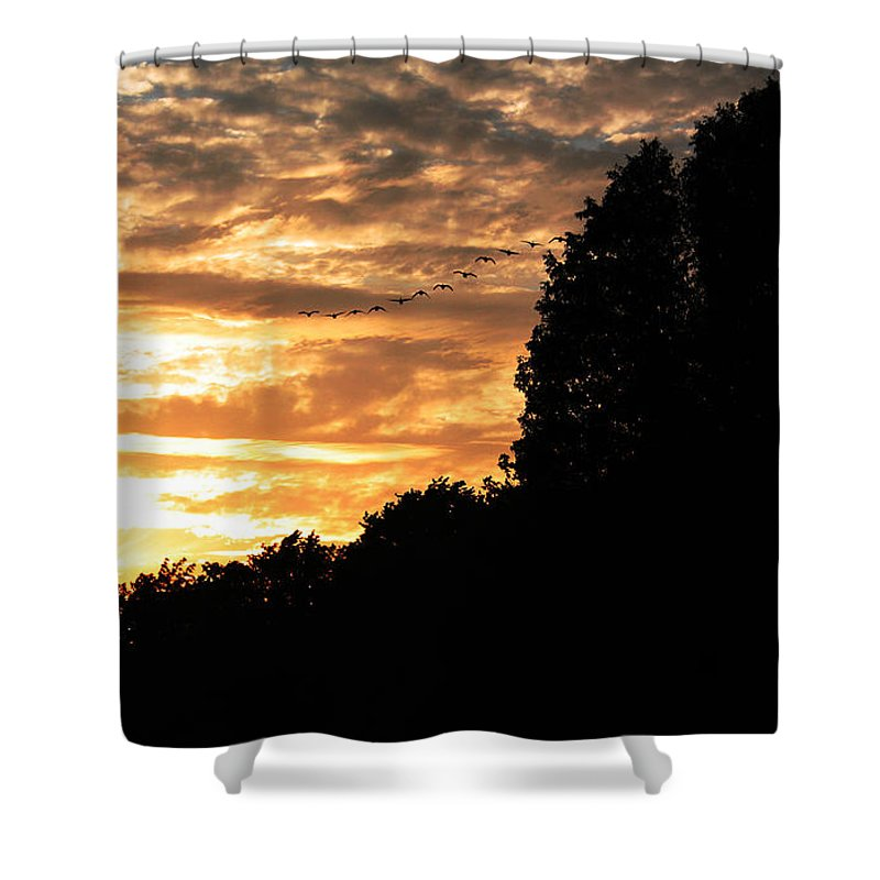 Sunset Shower Curtain featuring the photograph Birds Flying At Sunset by Joanne Coyle