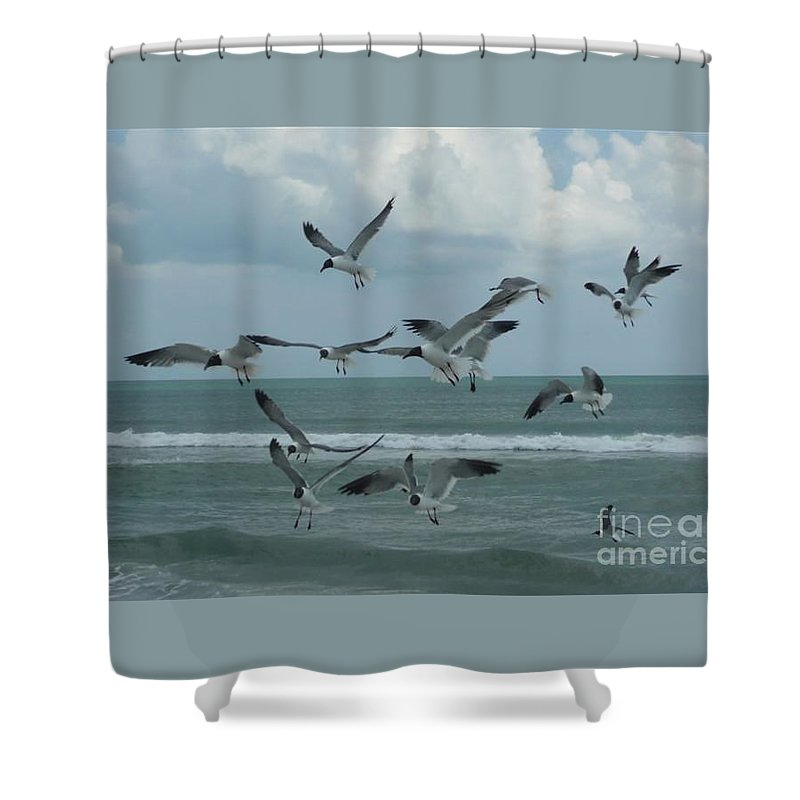 Birds Shower Curtain featuring the photograph Birds In Flight by Barb Montanye Meseroll