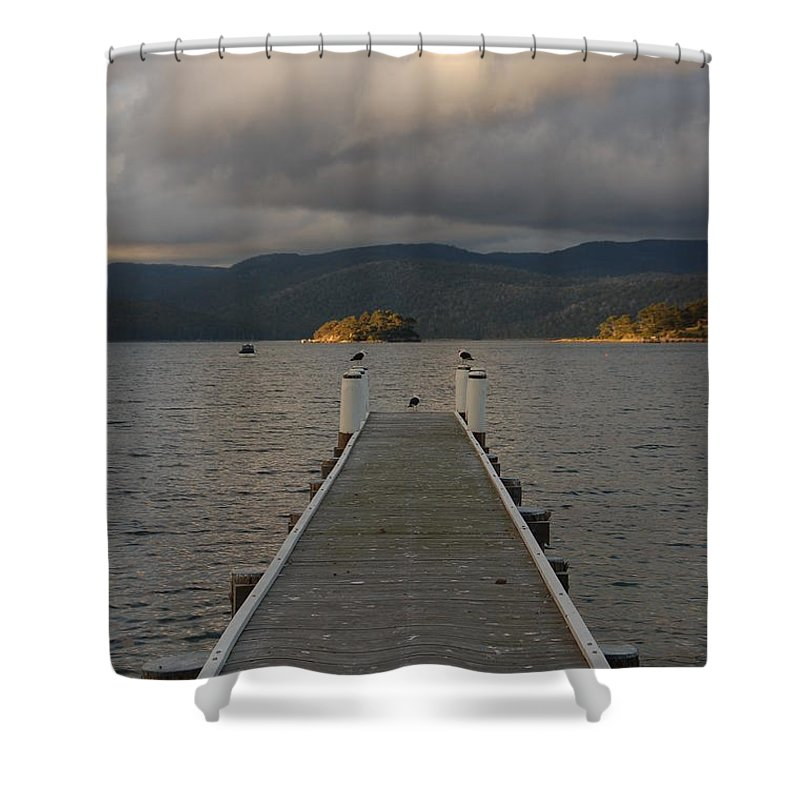 Dock Shower Curtain featuring the photograph Birds On A Pier by Harry Coburn