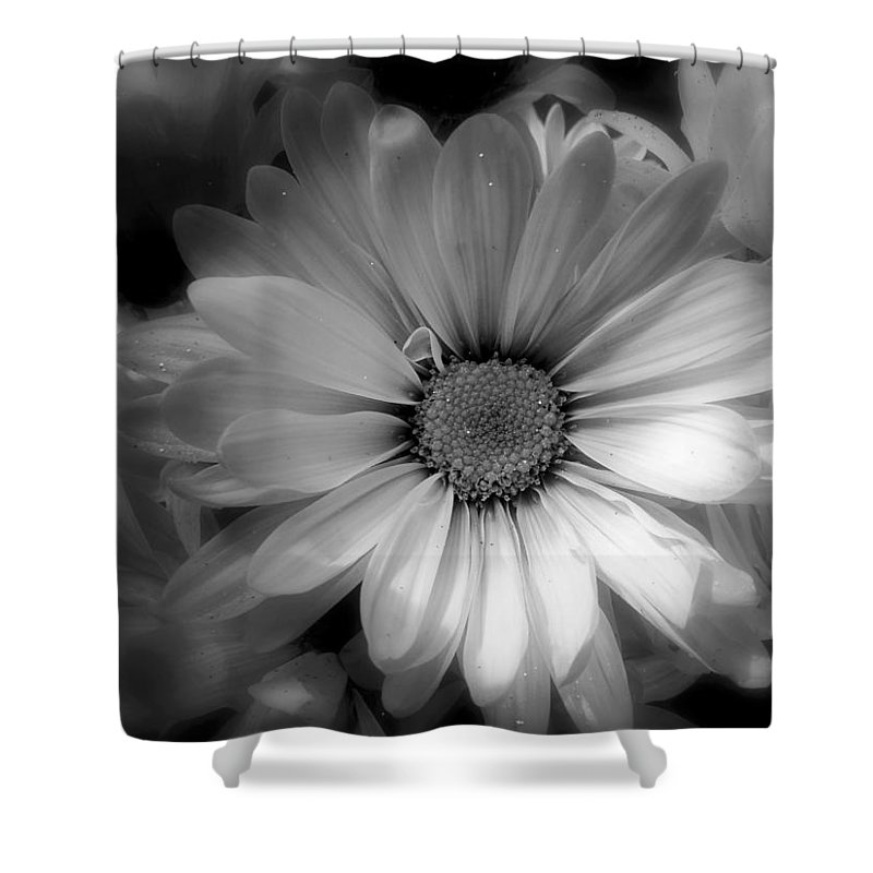 Flora Shower Curtain featuring the photograph Black And White Flowers by April Cook
