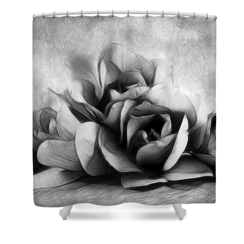 Magnolia Shower Curtain featuring the photograph Black And White Is Beautiful by Georgiana Romanovna