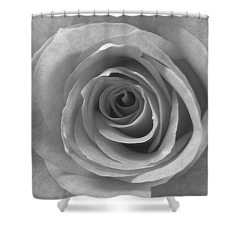 Rose Pedals Shower Curtain featuring the photograph Black And White by Luciana Seymour