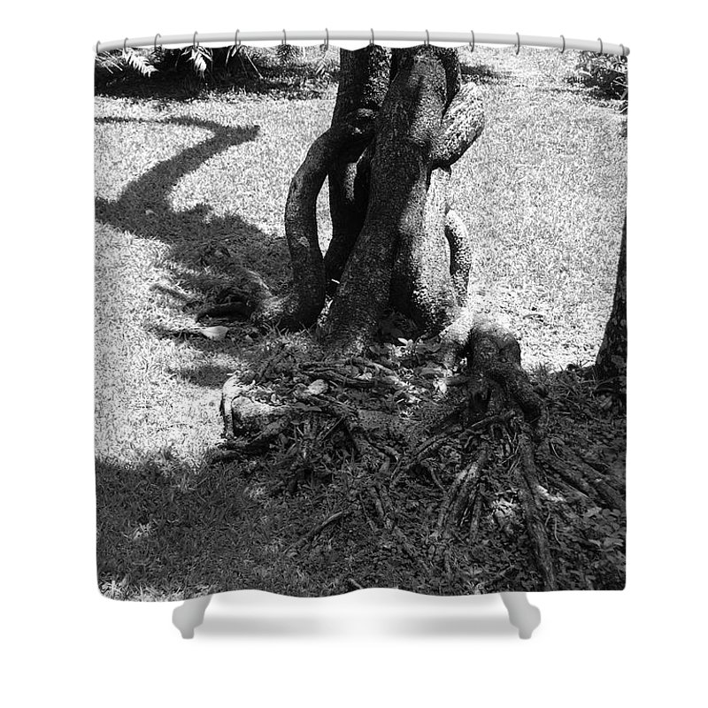 Black And White Shower Curtain featuring the photograph Black And White Roots by Rob Hans