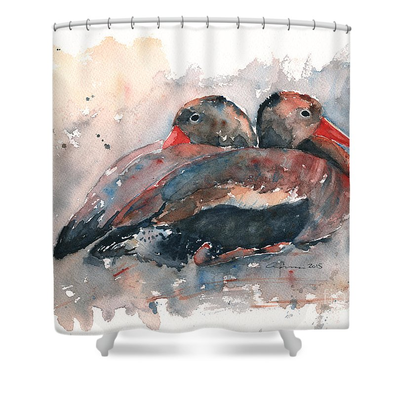 Duck Shower Curtain featuring the painting Black Bellied Whistling Duck by Claudia Hafner