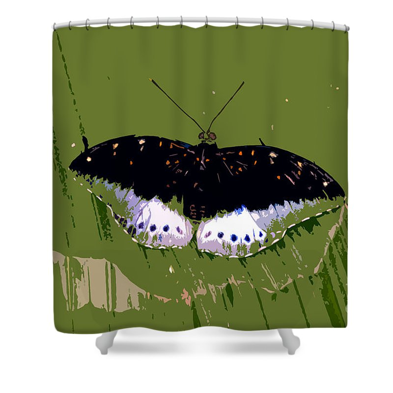 Butterfly Shower Curtain featuring the photograph Black Butterfly by David Lee Thompson