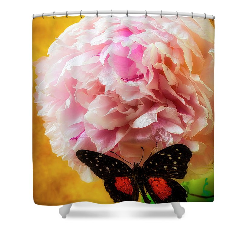 Marvelous Shower Curtain featuring the photograph Black Butterfly On Peony by Garry Gay