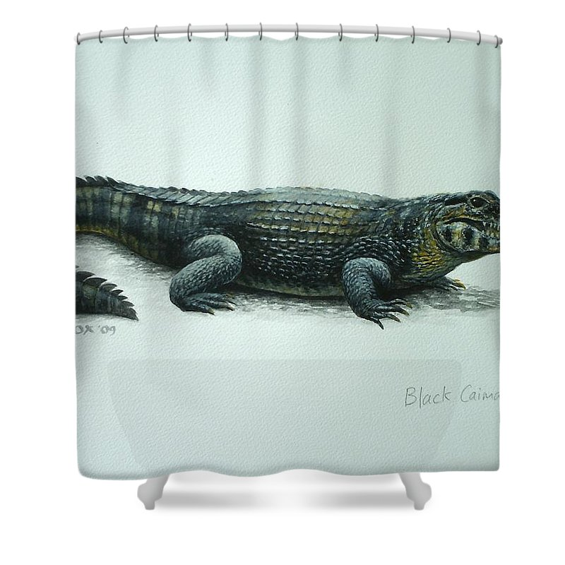 Black Caiman Shower Curtain featuring the painting Black Caiman by Christopher Cox