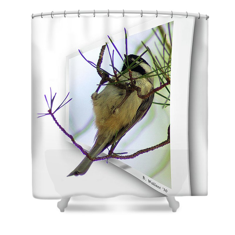 2d Shower Curtain featuring the photograph Black-capped Chick-a-dee by Brian Wallace