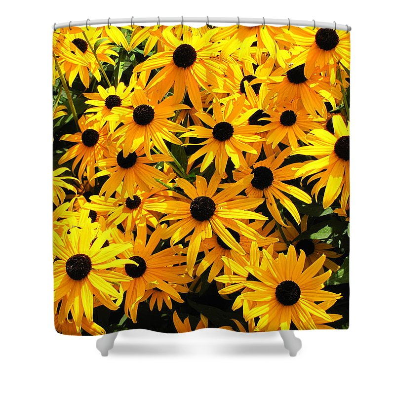Black Eyed Susies Shower Curtain featuring the photograph Black Eye Suzies by Gary Adkins