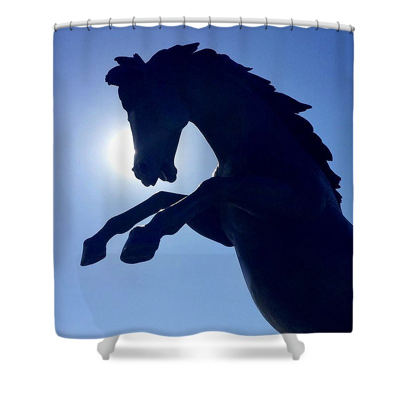 Horse Shower Curtain featuring the photograph Black Horse by S M